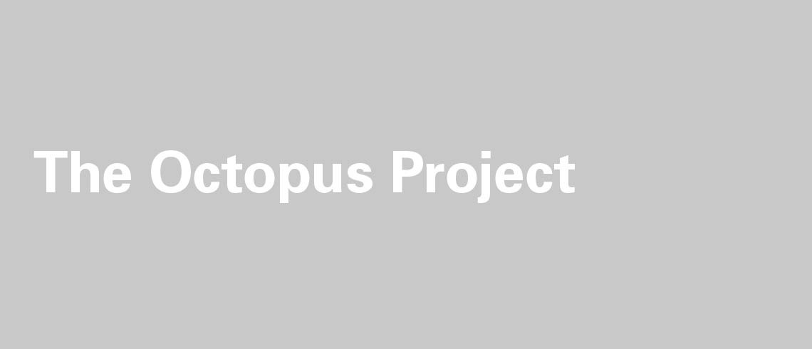 The_octopus_project